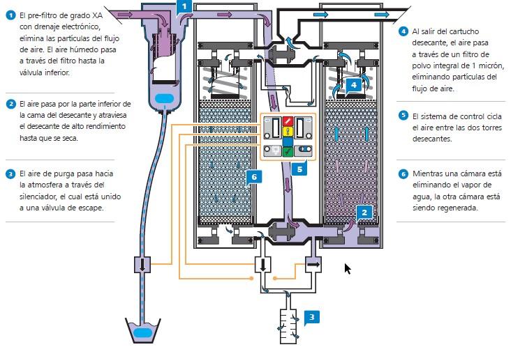 Ejemplo de proceso de secado de WALKER FILTRATION modelos PD.